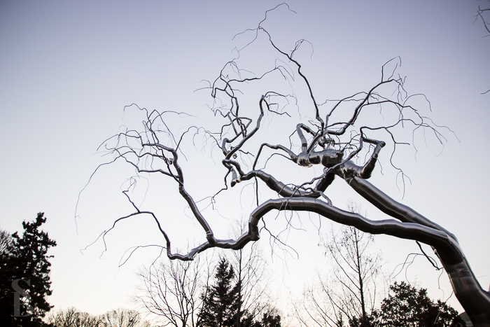 Graft, sculpture by Roxy Paine